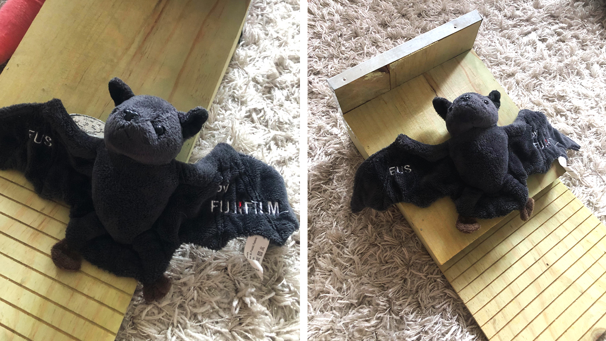 "The Fujifilm family's fluffy bat mascot ""EUS"" explored the wooden nesting box prepared for its friends living outdoors by one of our Fujifilm colleagues."